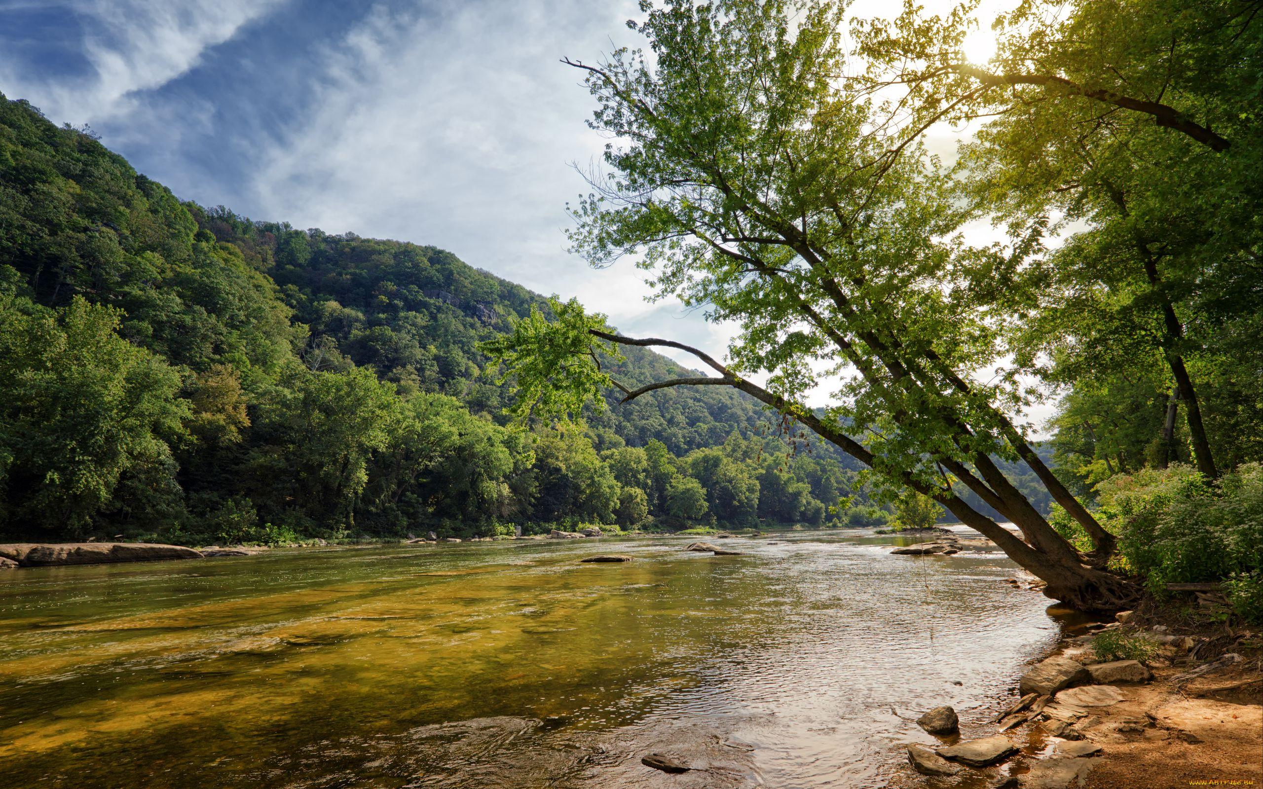 природа, реки, озера, горы, река